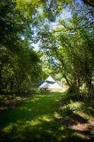 Railway 6 - Wild Camping - Private Pitch