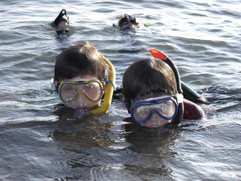 Snorkelling in Dorset