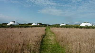 Luxury camping in an eco-friendly South Hams hideaway.