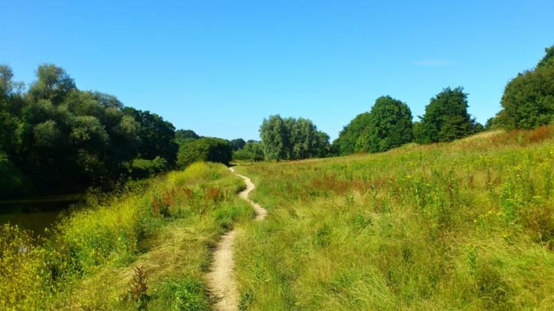 Campervan Hire in Kent | Motorhome Rental in Kent