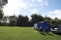 Grass Pitch (Tent Only)