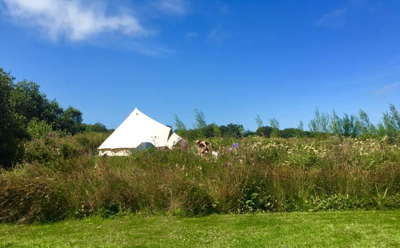 Walton West Campsite Lower Foxhill, Walton West, Little Haven, Pembrokeshire SA62 3UA