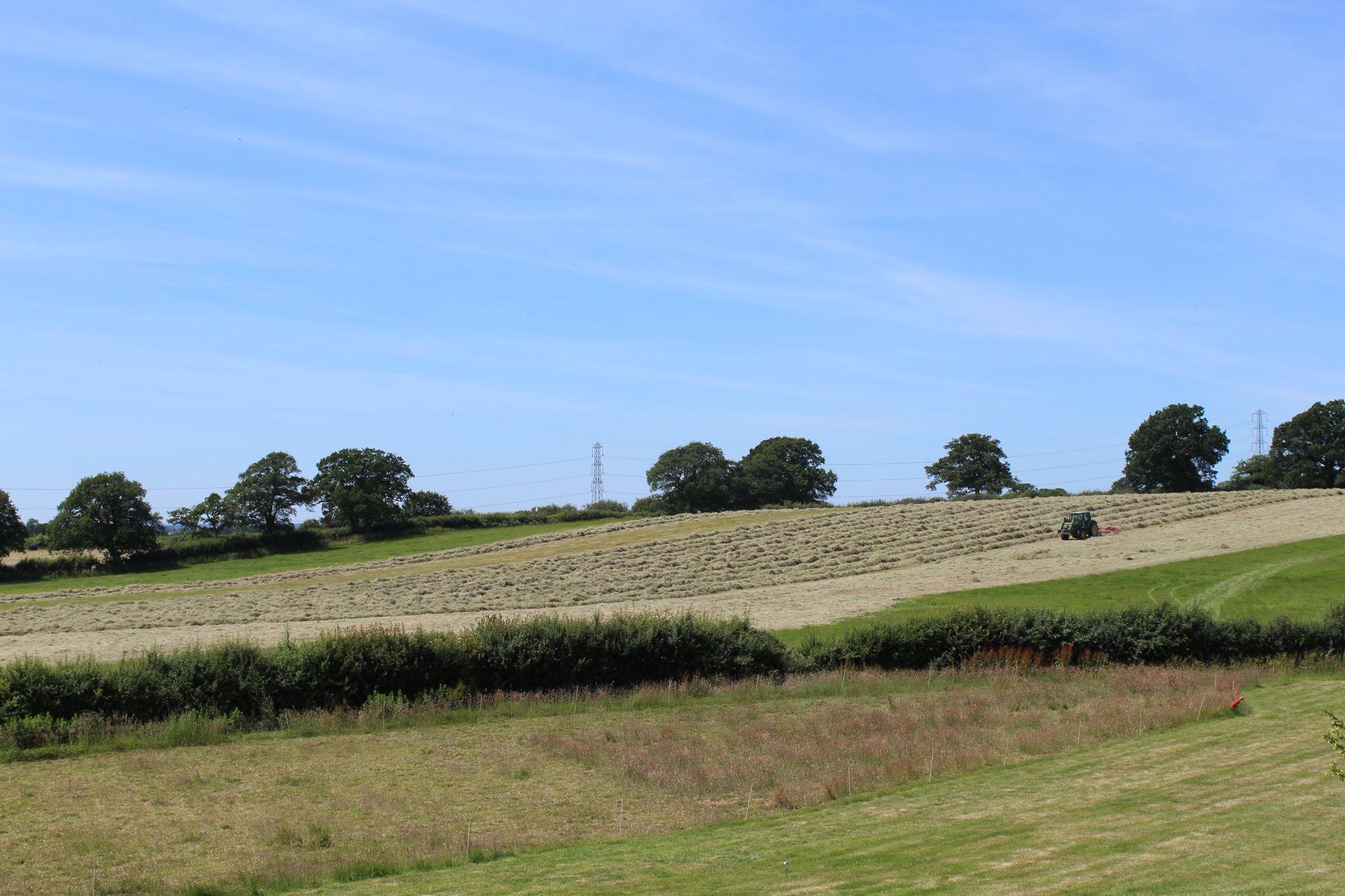 Malmesbury Camping | Campsites Near Malmesbury, Wiltshire