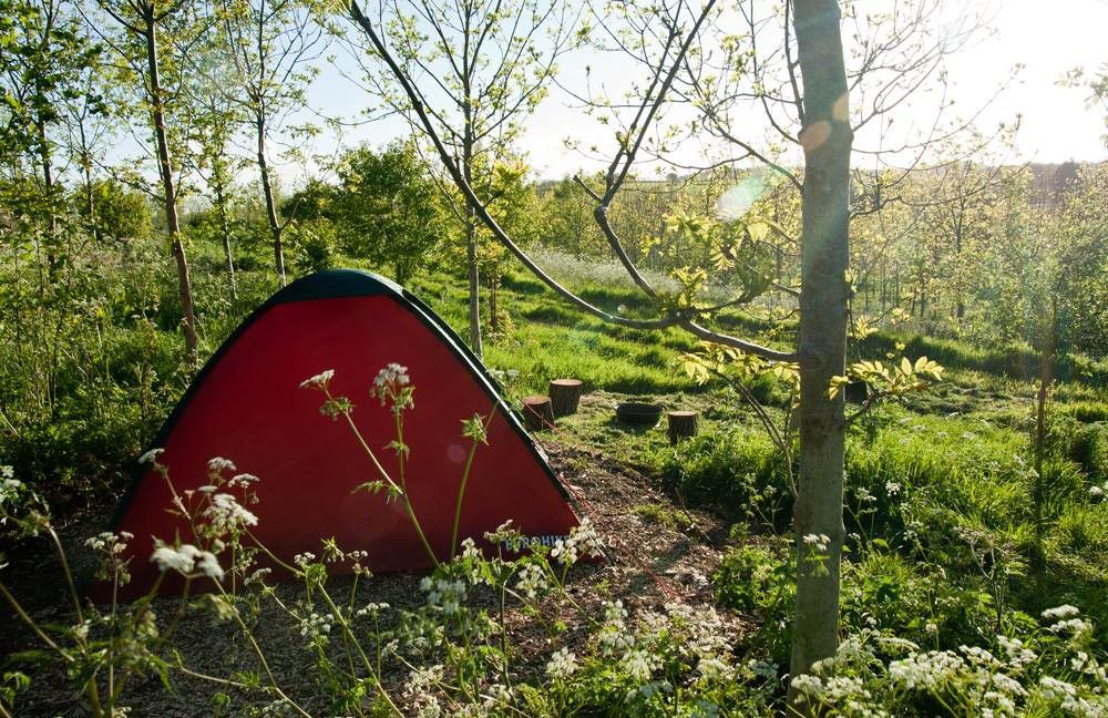 Back-to-basics, natural camping with campfires encouraged and easy walks to the local attractions in Frome.