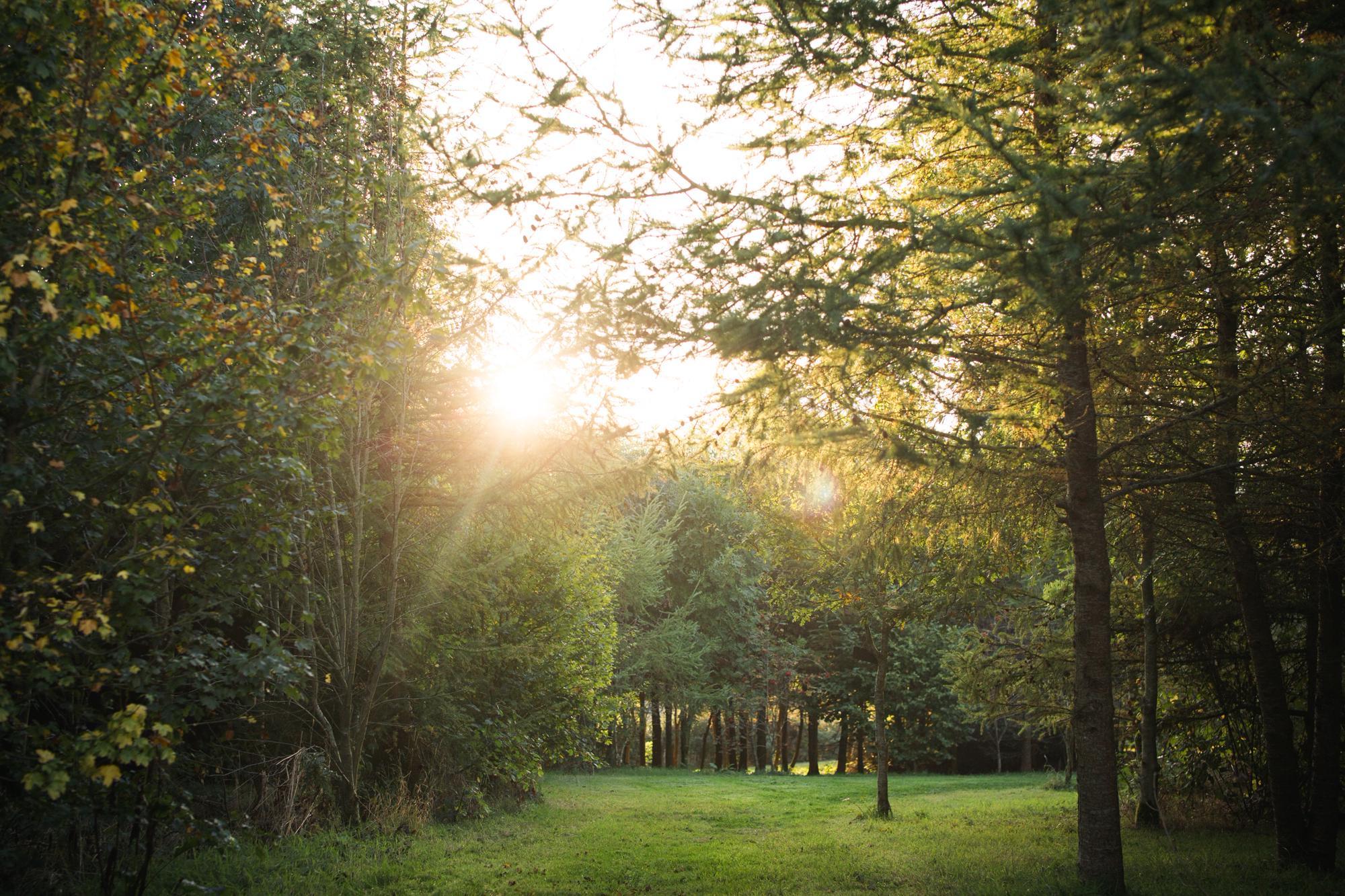 Pembroke Camping | Best campsites in Pembroke, Pembrokeshire