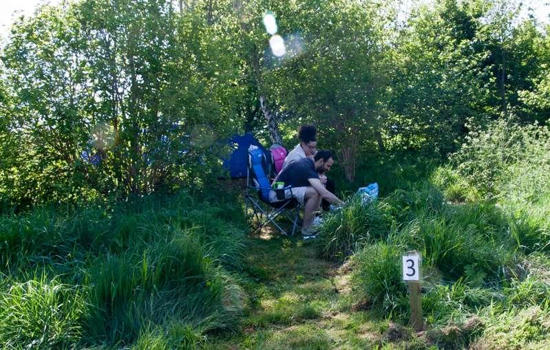 7m x 2.5 - 3m  Small woodland pitch No.3