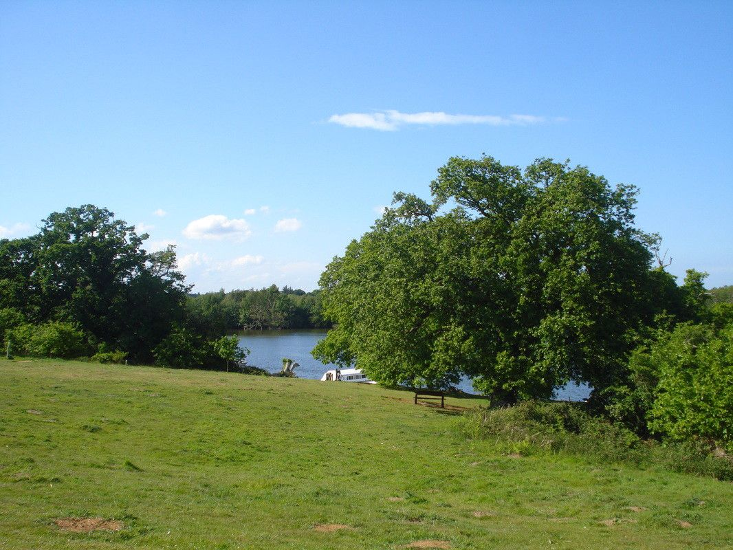 A wonderfully down-to-earth camping experience, with the Broads National Park as your back garden.