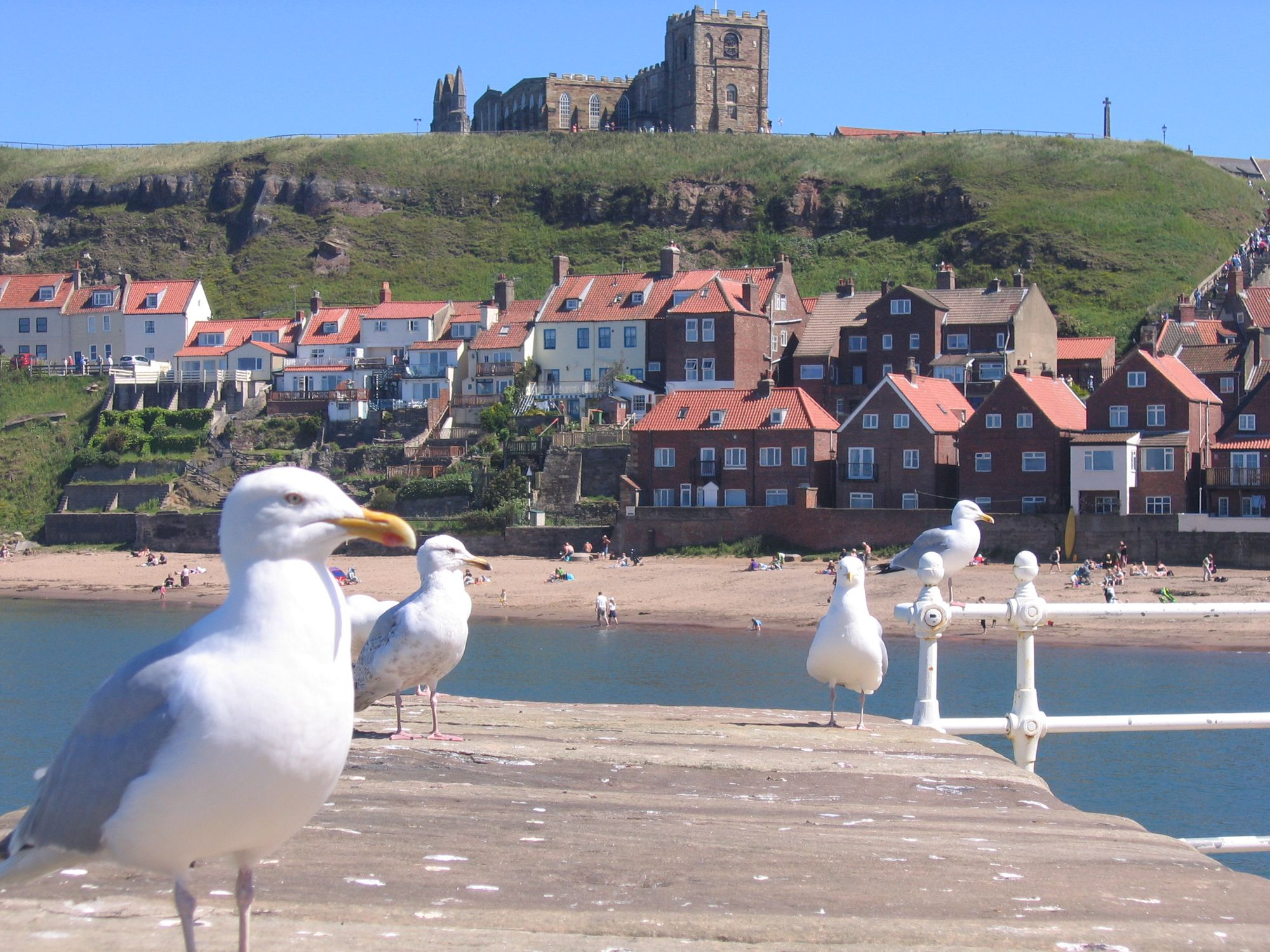Hotels, Cottages, B&Bs & Glamping in Whitby & the North Yorkshire Coast