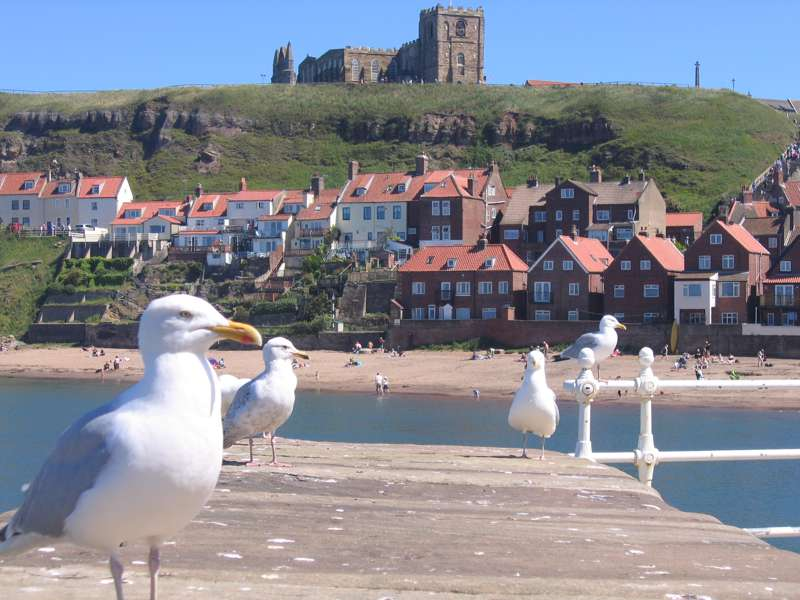 Hotels, Cottages, B&Bs & Glamping in Whitby & the North Yorkshire Coast - Cool Places to Stay in the UK