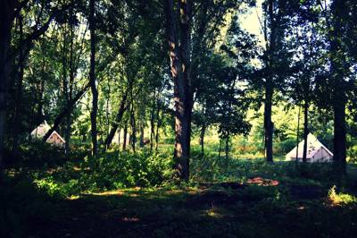 Wild events, weddings and glamping getaways in the Essex countryside.