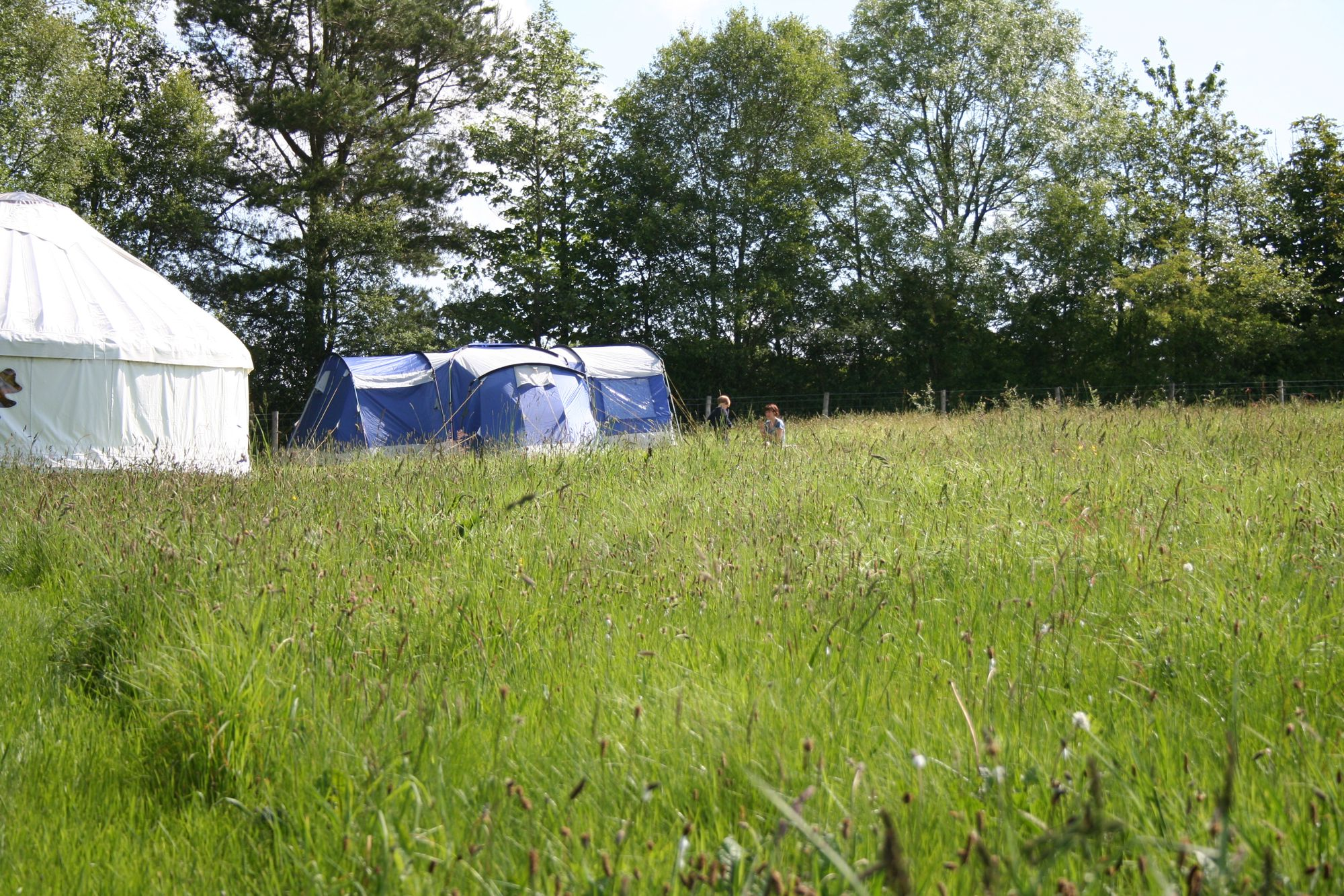 Glamping in Lampeter holidays at Glampingly
