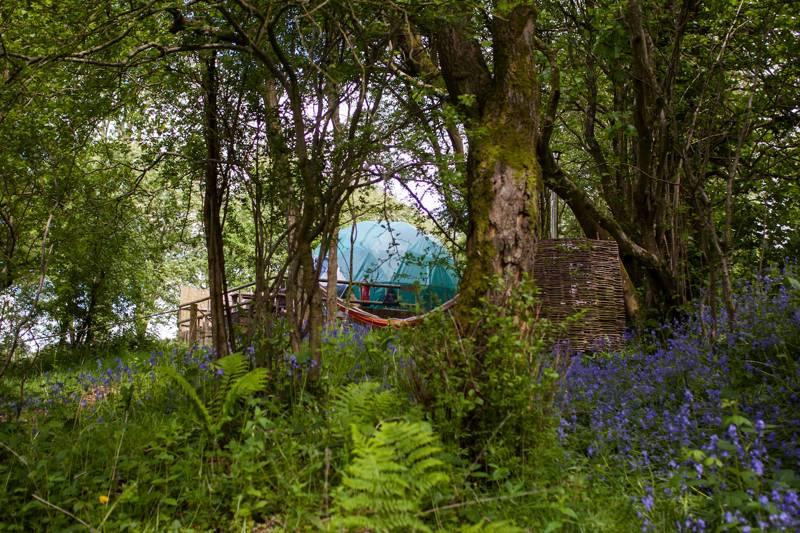 Cosy Under Canvas Dolbedwyn, Newchurch, Kington, Powys HR5 3QQ