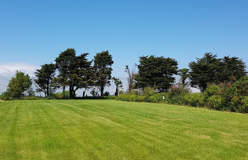 Pristine camping pitches for up to 40 tents and campervans or caravans.