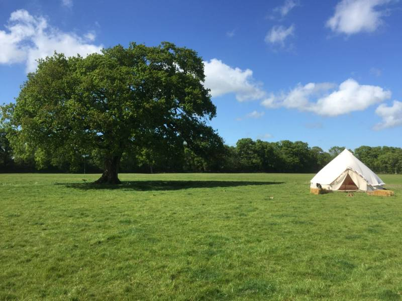 Grass Camping Pitch - Non electric