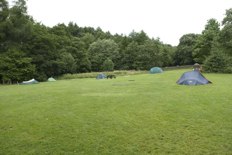 Backpacker Grass Pitch (No Vehicle)