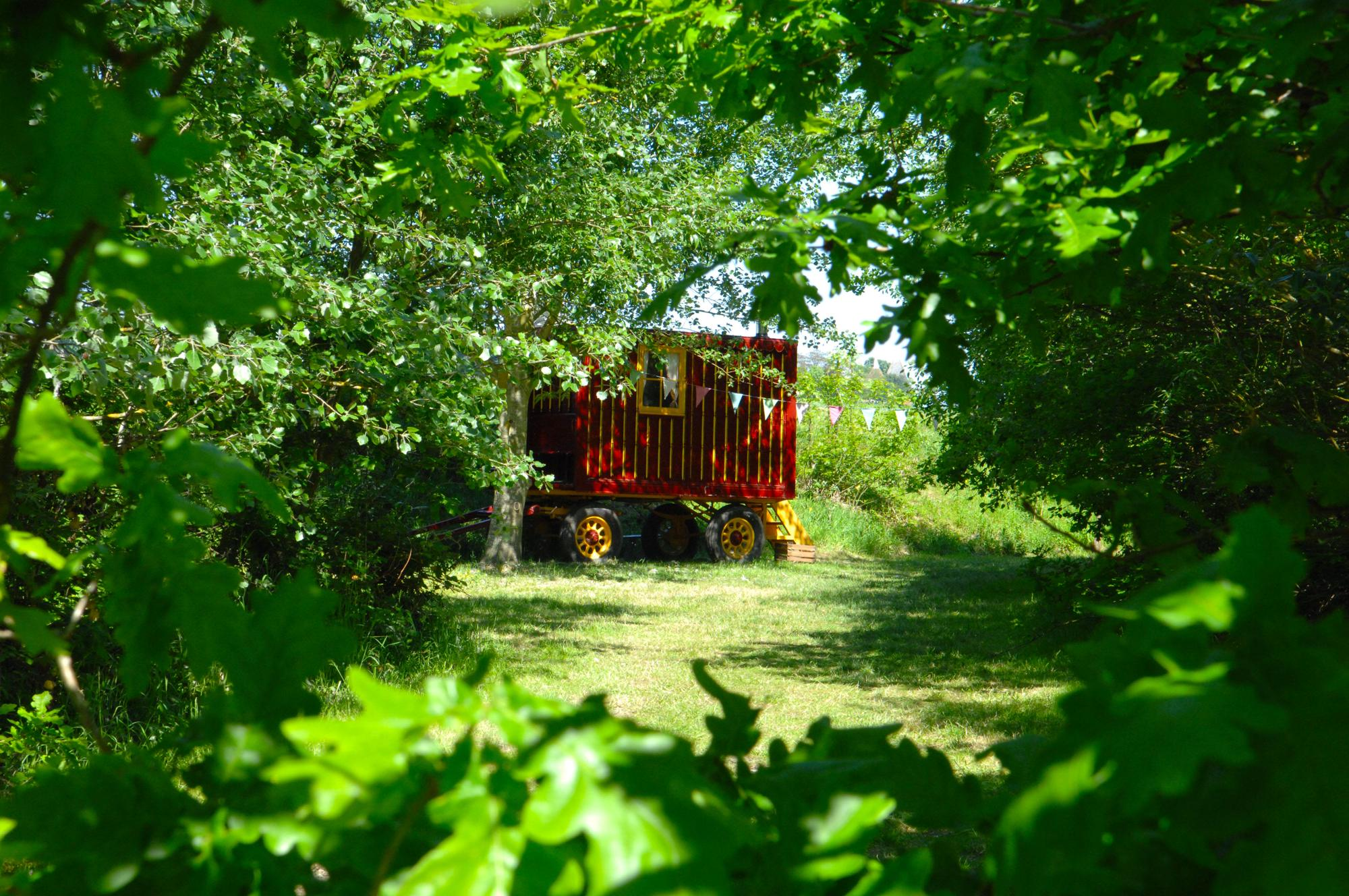 Campsites in Herne Bay holidays at Cool Camping