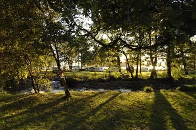 Cashel Camping Cashel Campsite, Loch Lomond, Rowardennan, Dunbartonshire, G63 0AW