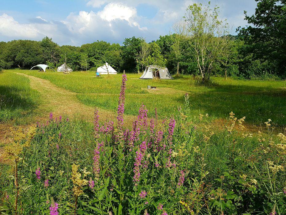 Cynefin Eco Camping