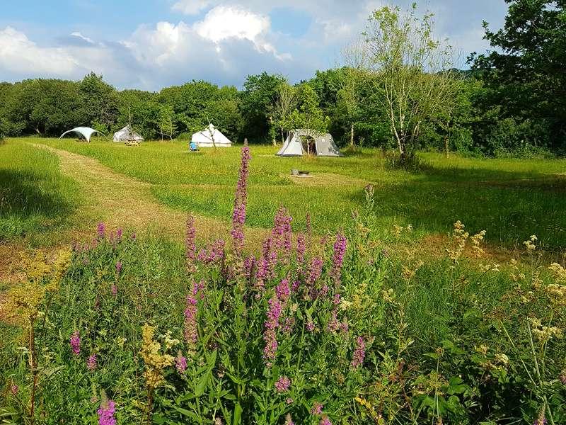 Cynefin Eco Camping Cynefin, Pembrey, Carmarthenshire SA16 0JR