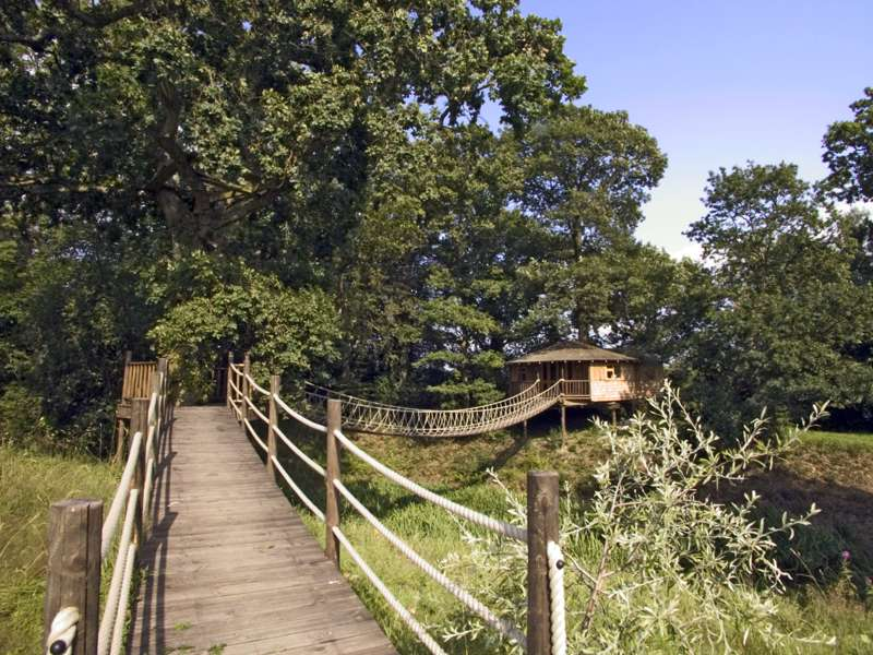 Bensfield Treehouse Bensfield Treehouse 1 Bensfield Farm Cottages Beech Hill Wadhurst  East Sussex TN5 6JR