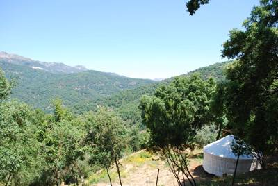 Stunningly located luxury glamping site in the hills above Genalguacil.