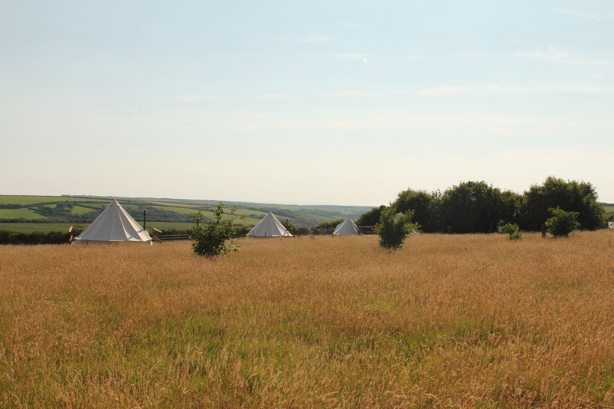 Luxury eco-friendly yurt, cabin and bell tent site with its very own surf school and activities a'plenty.
