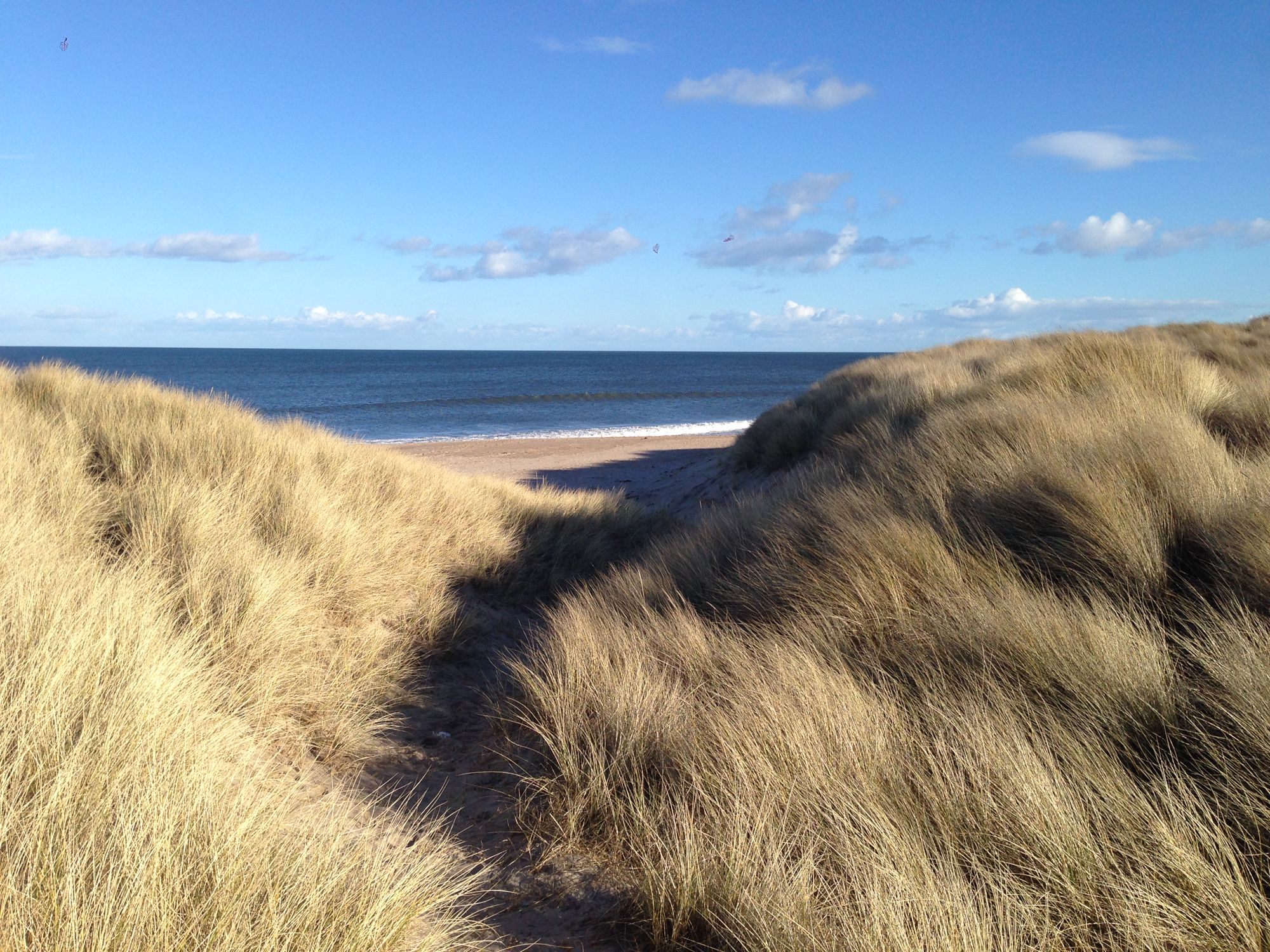 The best beaches in Northumberland