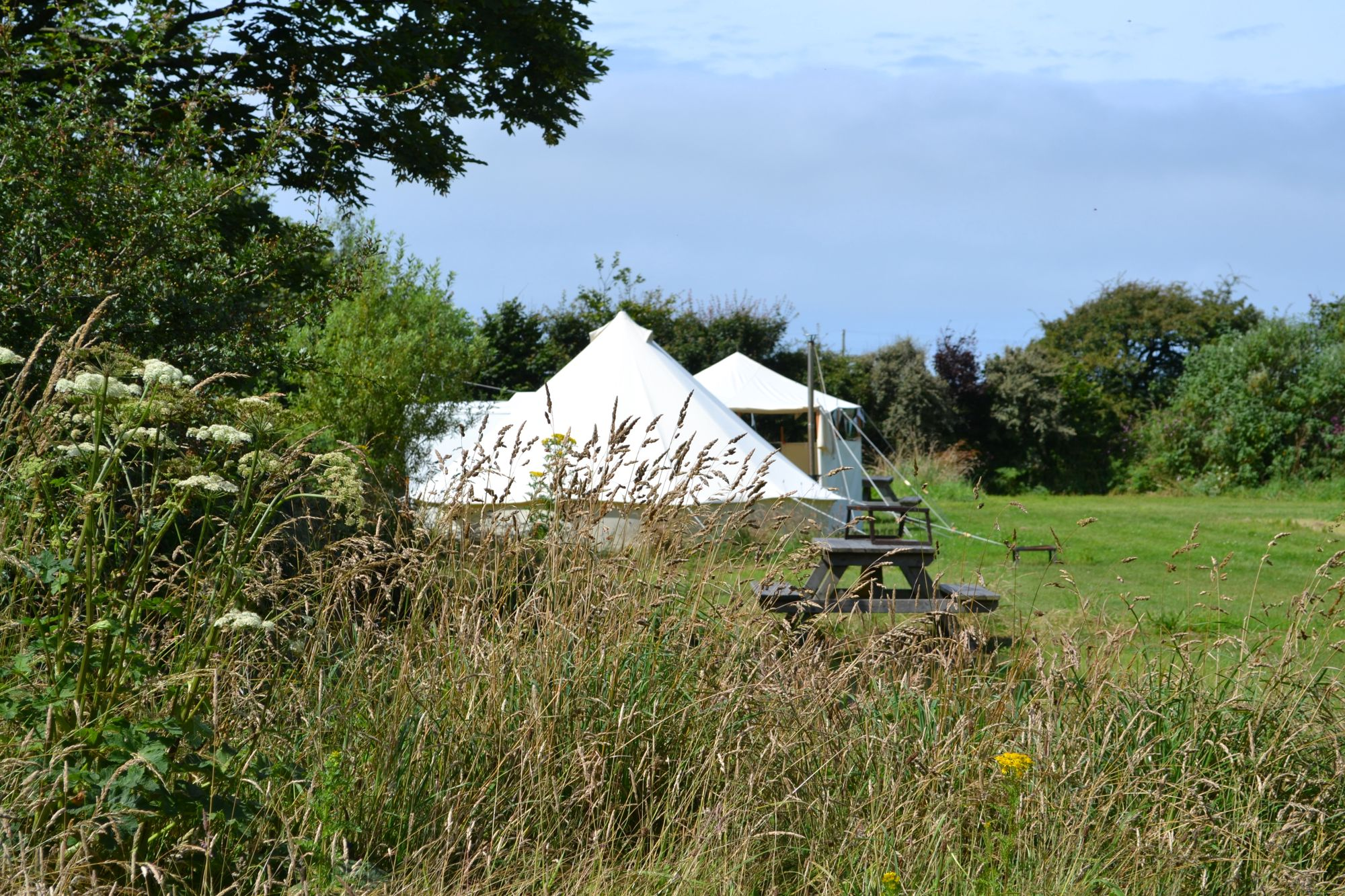 Campsites in St Davids – Glampingly