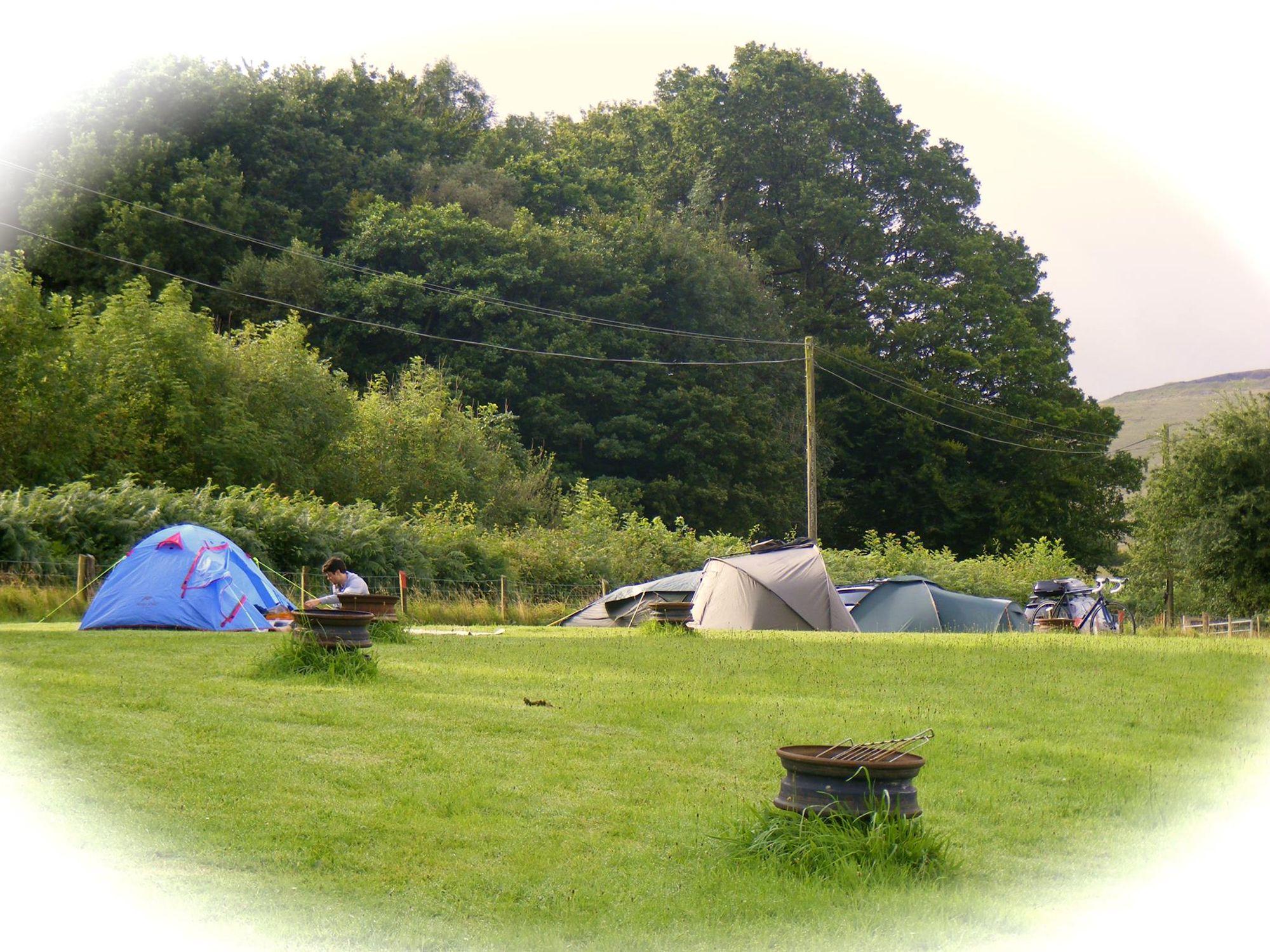 Cuckoo Camping