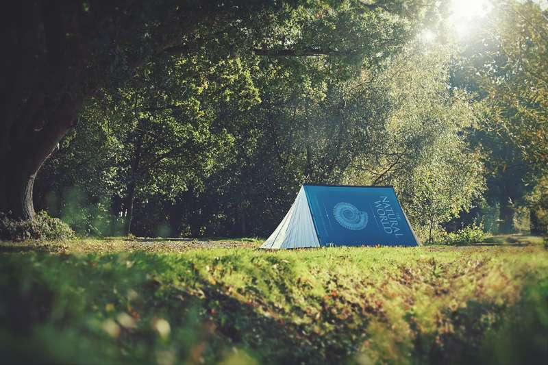 Subscribe to win the tent of your dreams from FieldCandy