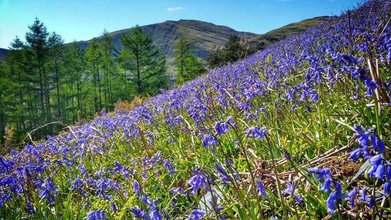 Hotels, Cottages, B&Bs & Glamping in Wales