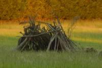 Meadow pitch