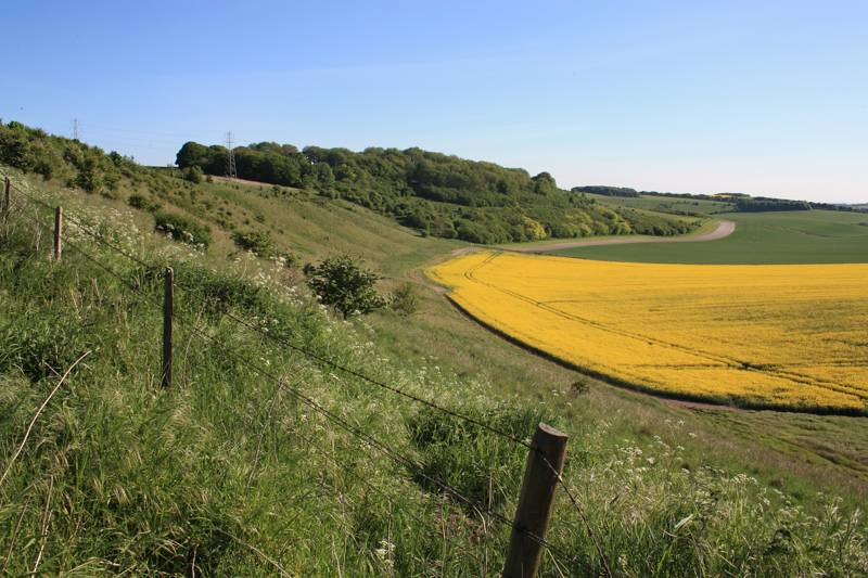 Campsites in Wiltshire – Top-rated campsites in Wiltshire | Cool Camping
