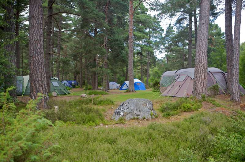 Campsites in the Cairngorms – Best campsites in the national park – Cool Camping