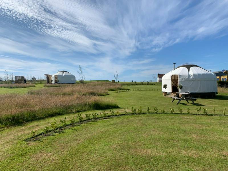 The yurts at Headland Escape, Pembrokeshire.