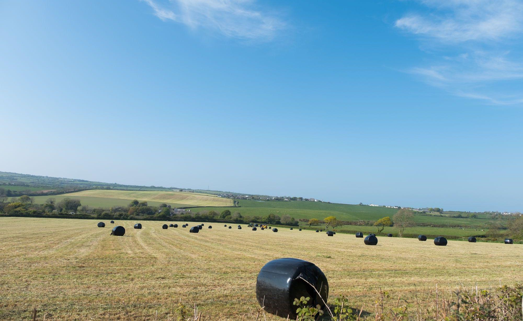 Lampeter Camping | Campsites in Lampeter, West Wales