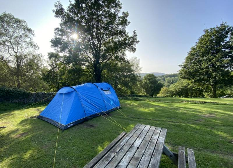 UK Camping Trends Report 2021