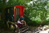 Walkers Wagon. Vargo (Gypsy Caravan)