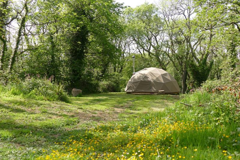 The geodesic dome at Preseli Venture is in a sheltered glade among the trees.
