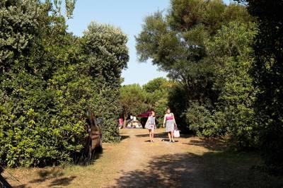 Camping Playa de Taurán Playa de Taurán Luarca Valdés 33700