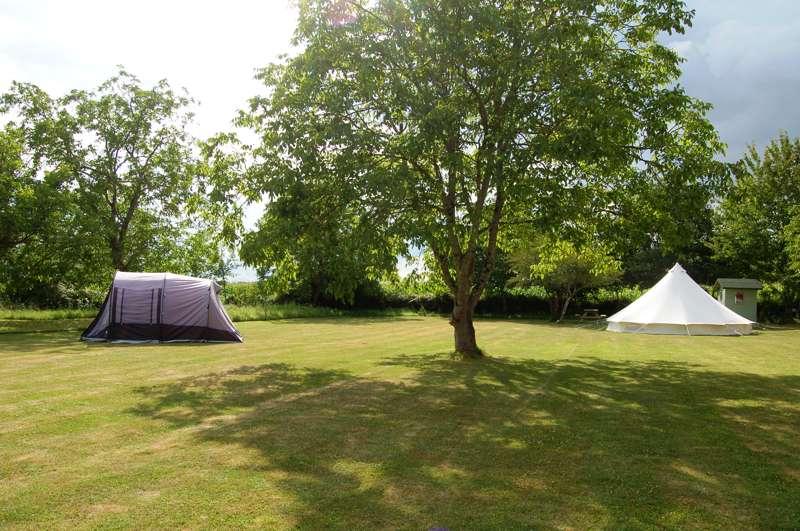 Camping La Forêt de Tessé 1 Rue des Berches, Grosbout 16240, La Foret de Tessé, Charente, Nouvelle-Aquitaine, France