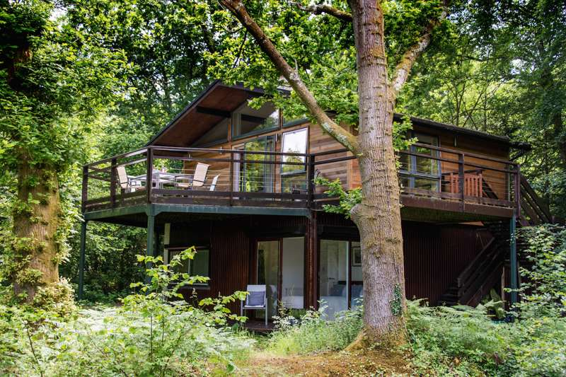 New Forest Living