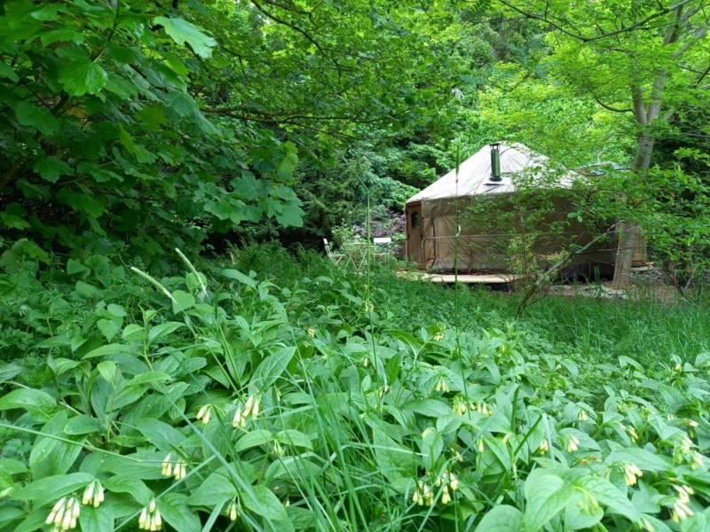 Esk Yurt