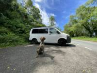 Manual VW T5 Campervan