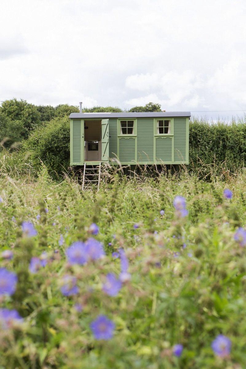 Shepherd's Hut Glamping