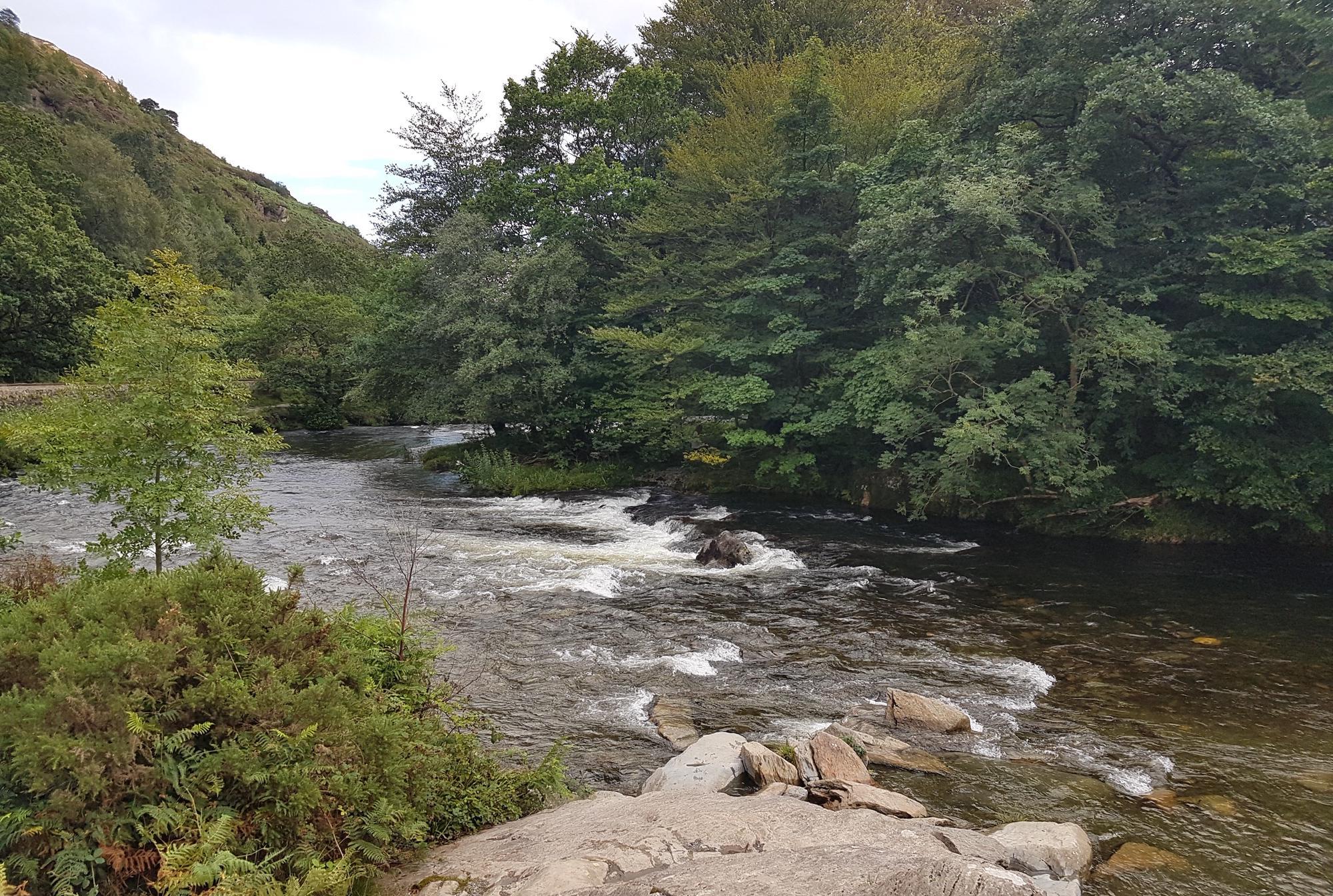 Beddgelert Camping   Campsites in Beddgelert, North Wales