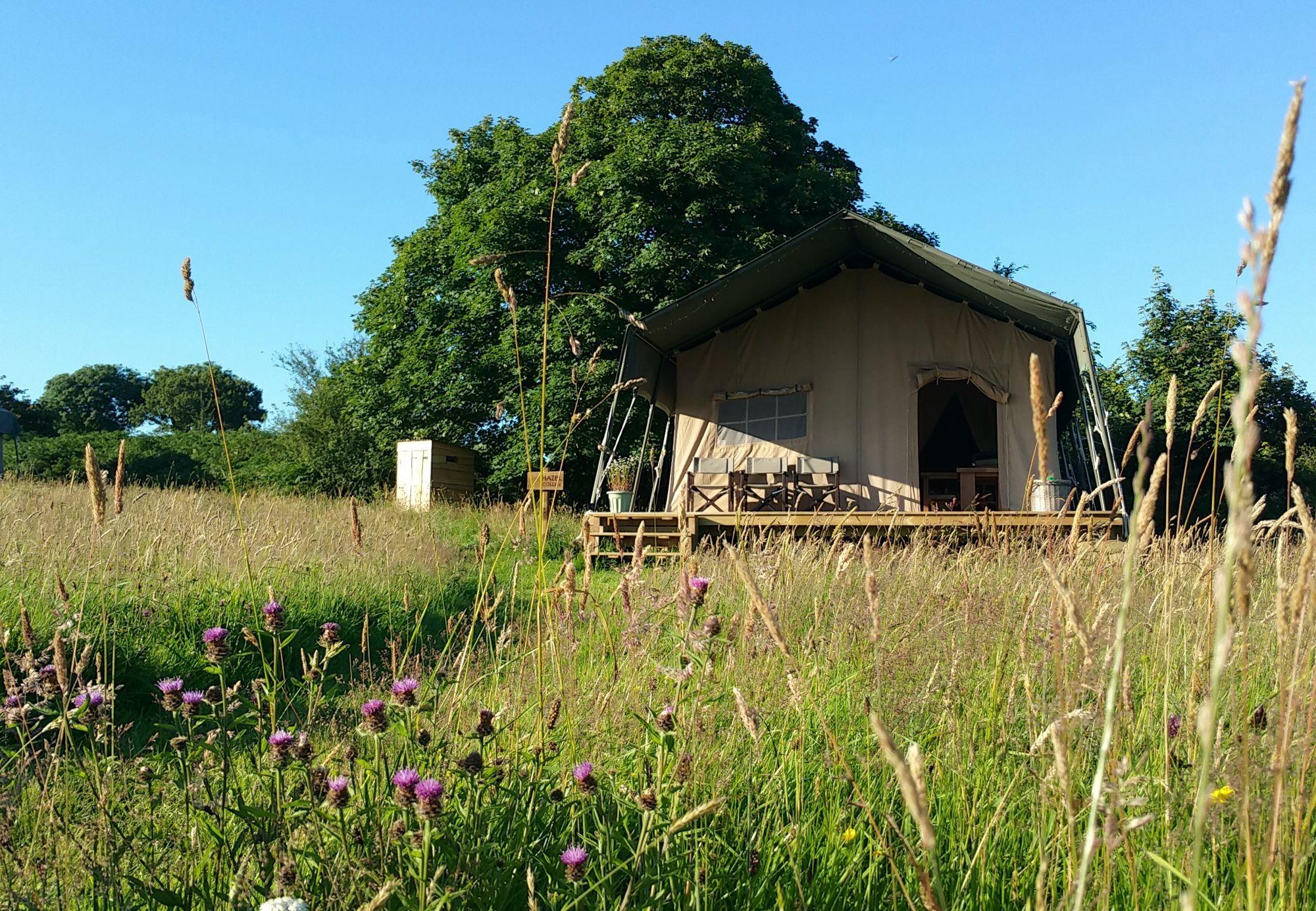 Campsites in the Preseli Hills, Pembrokeshire