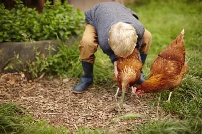 Wambrook Farm Wambrook Farm, Tatworth, Chard, Somerset TA20 3DF
