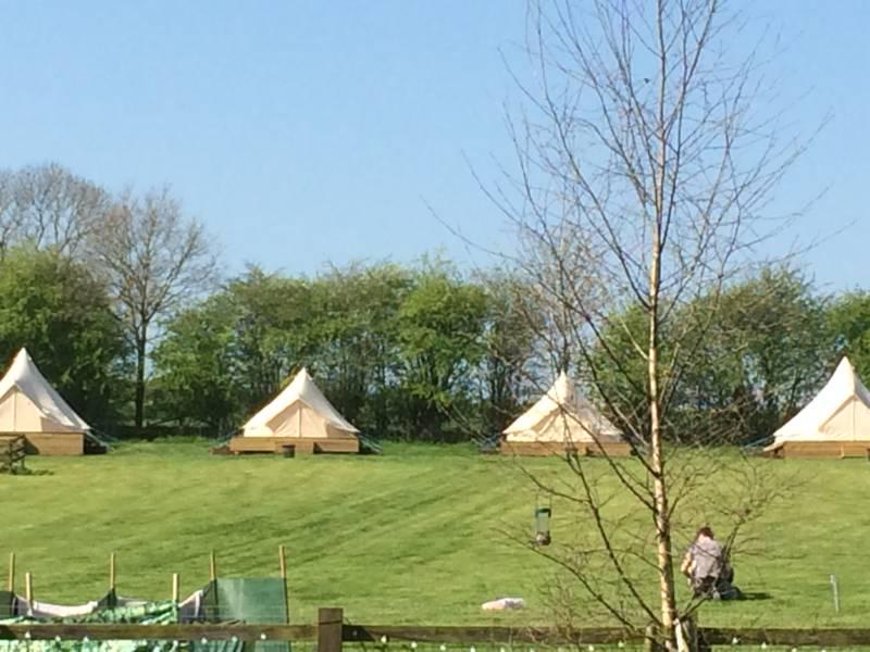 Wild Birds Bell Tent - 4 metre.