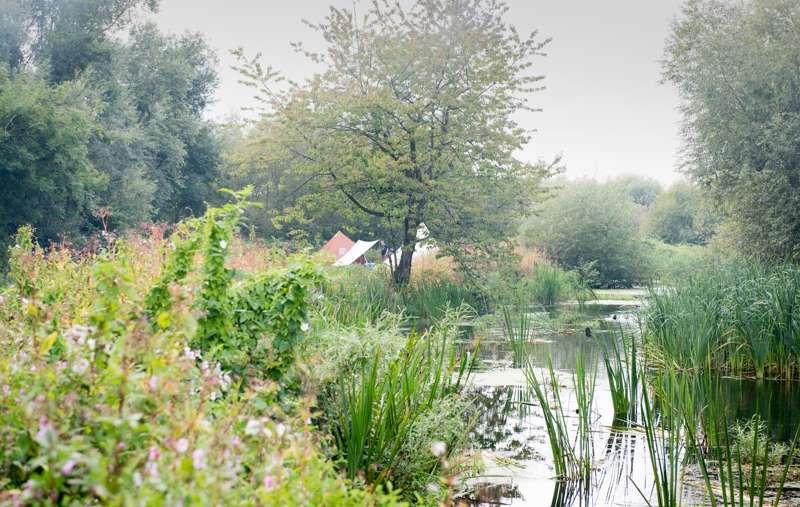 The Best Riverside Campsites in England